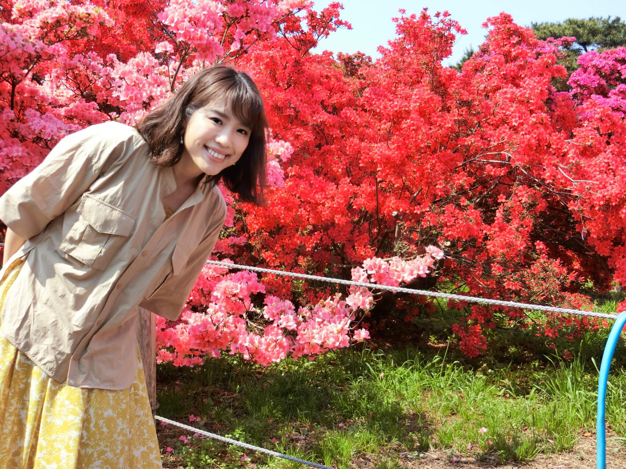 館林 つつじが岡公園のつつじ祭りは今が見頃です!♡