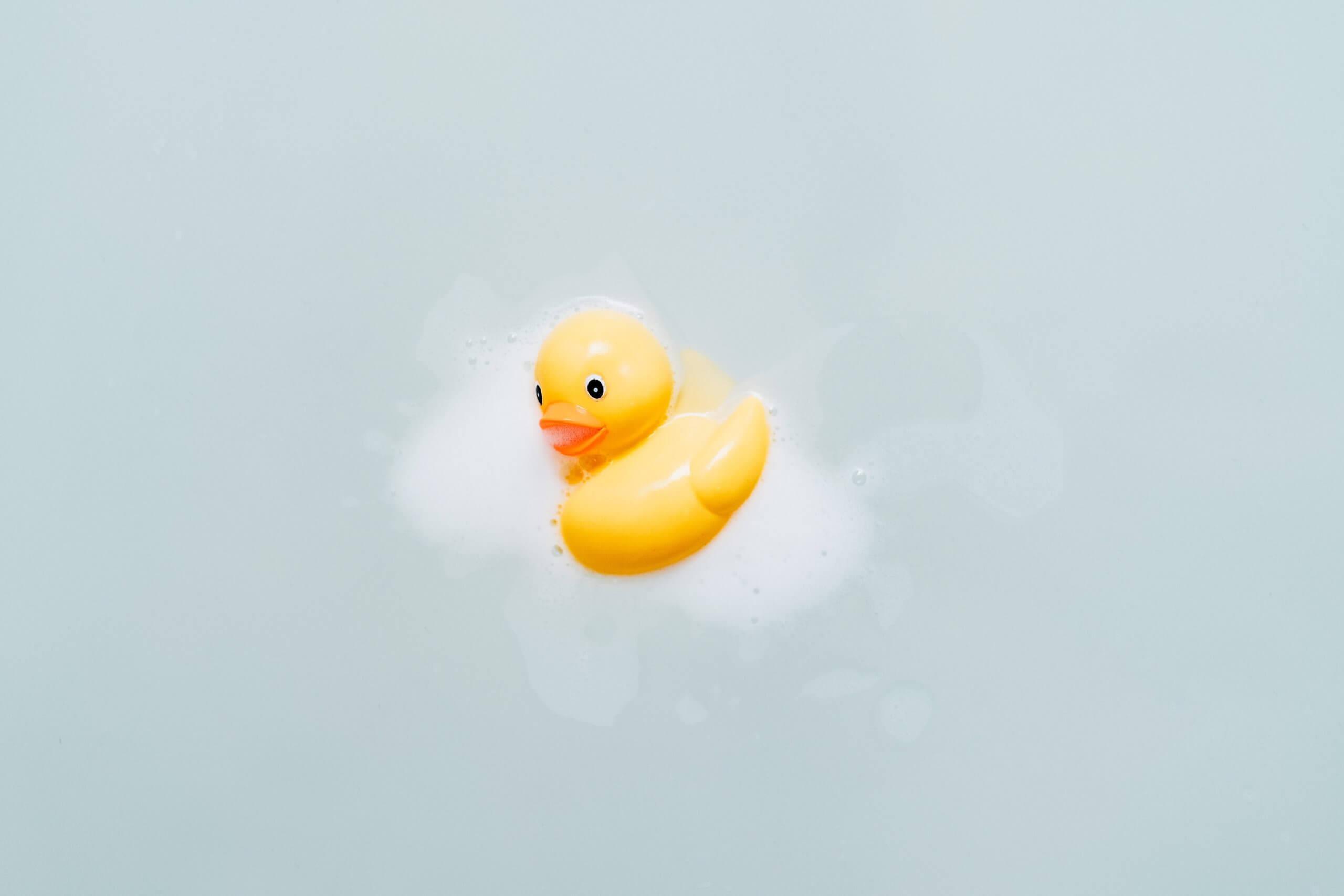 お風呂 あひる